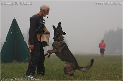 тренинг с Dr. H.Raiser